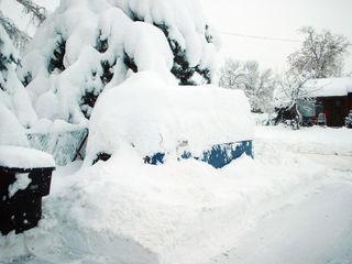 2003 Snow000_edited-1