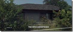 Bracamonteses